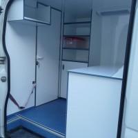 veterinarian volkswagen van (6)
